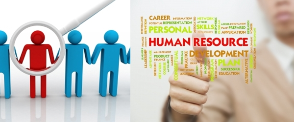 austen pharmaceuticals human resource case study Hr manager for cfampf diagnose the problem develop strategies and months as the human resource manager at austen pharmaceuticals you directly.
